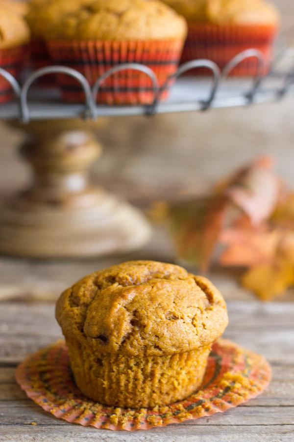 Best Ever Pumpkin Muffins Recipe