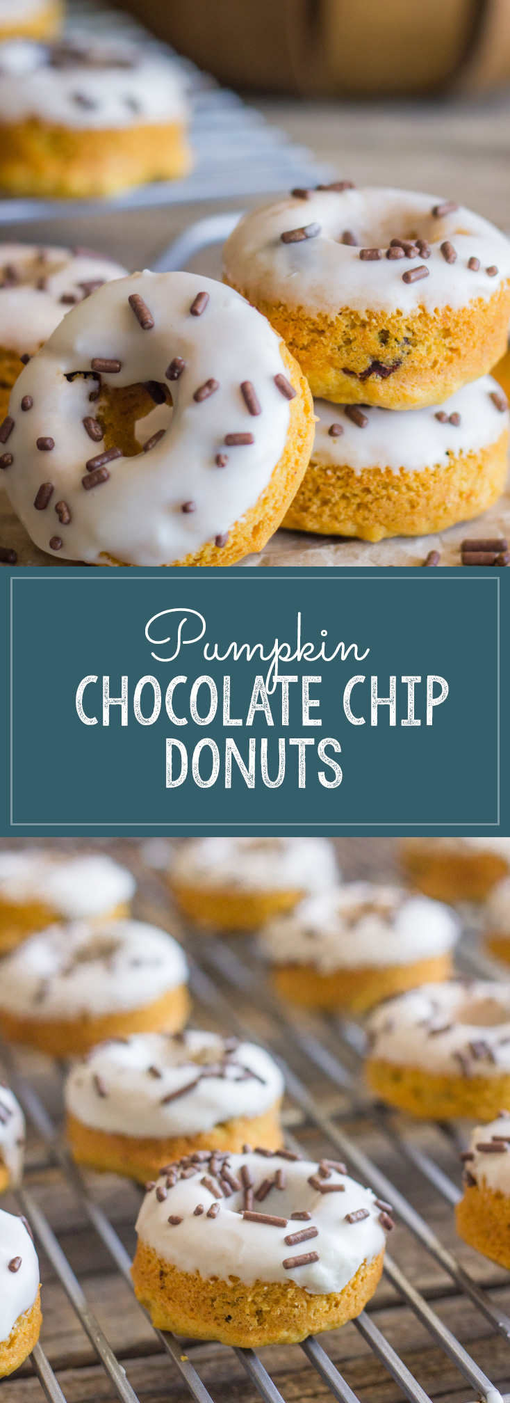 Mini Baked Pumpkin Chocolate Chip Donuts - perfectly bite-sized and will have you ready for Fall in no time!