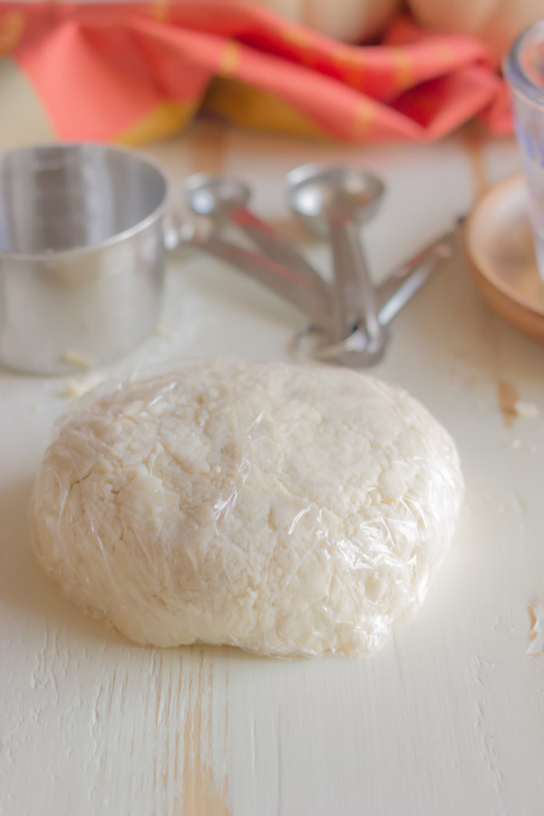 Pie Crust Tutorial Step 3 - pie dough wrapped with plastic, and shaped it into a round, flat disk.