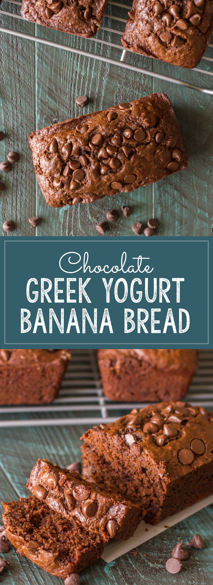Chocolate Chocolate Chip Greek Yogurt Banana Bread - So amazing what a little cocoa powder and chocolate chips will do to a simple loaf of banana bread!