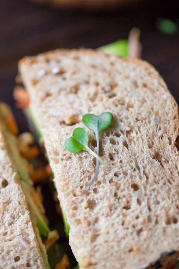 The top of the Power Veggie Sandwich with two pieces of micro greens placed on top.
