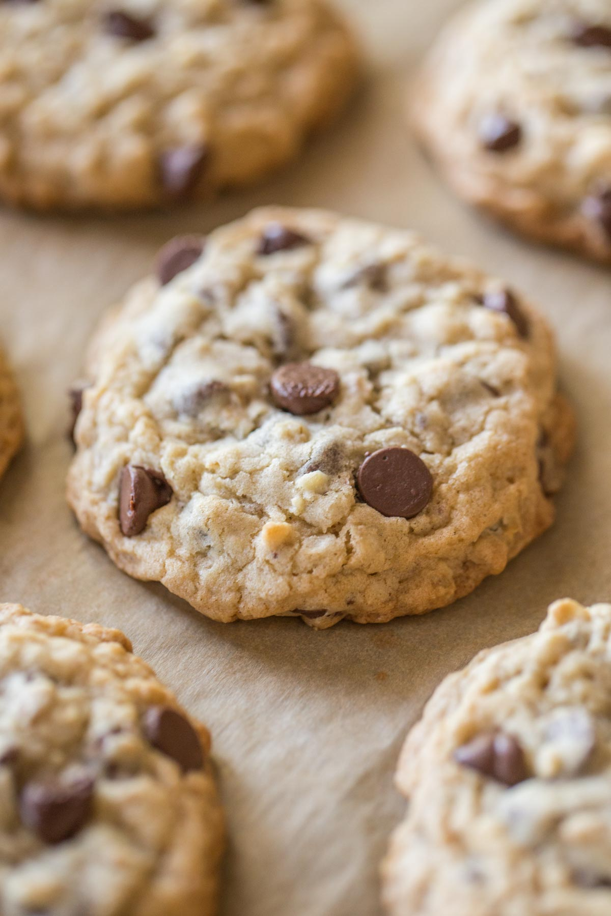Bakery Style Oatmeal Chocolate Chip Cookies on a parchment paper lined baking sheet.