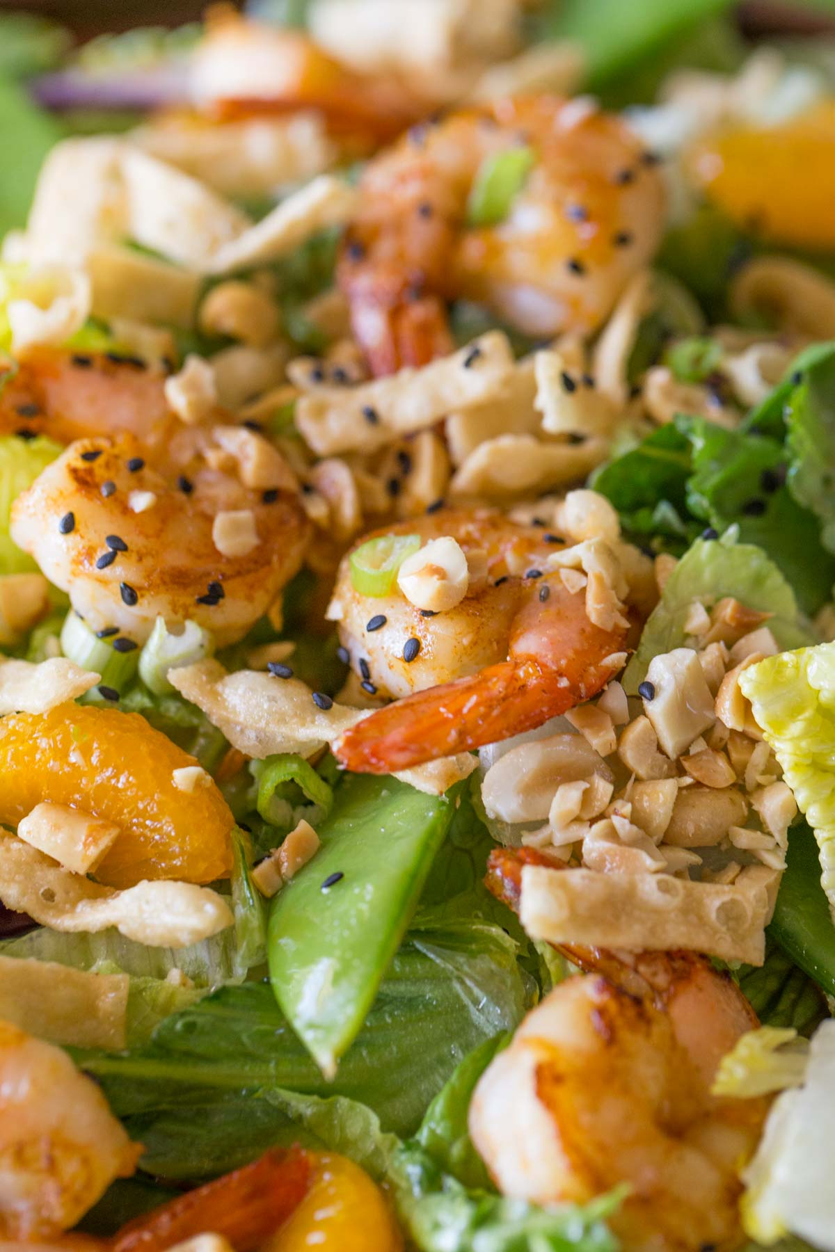 Close up of the Shrimp Salad.
