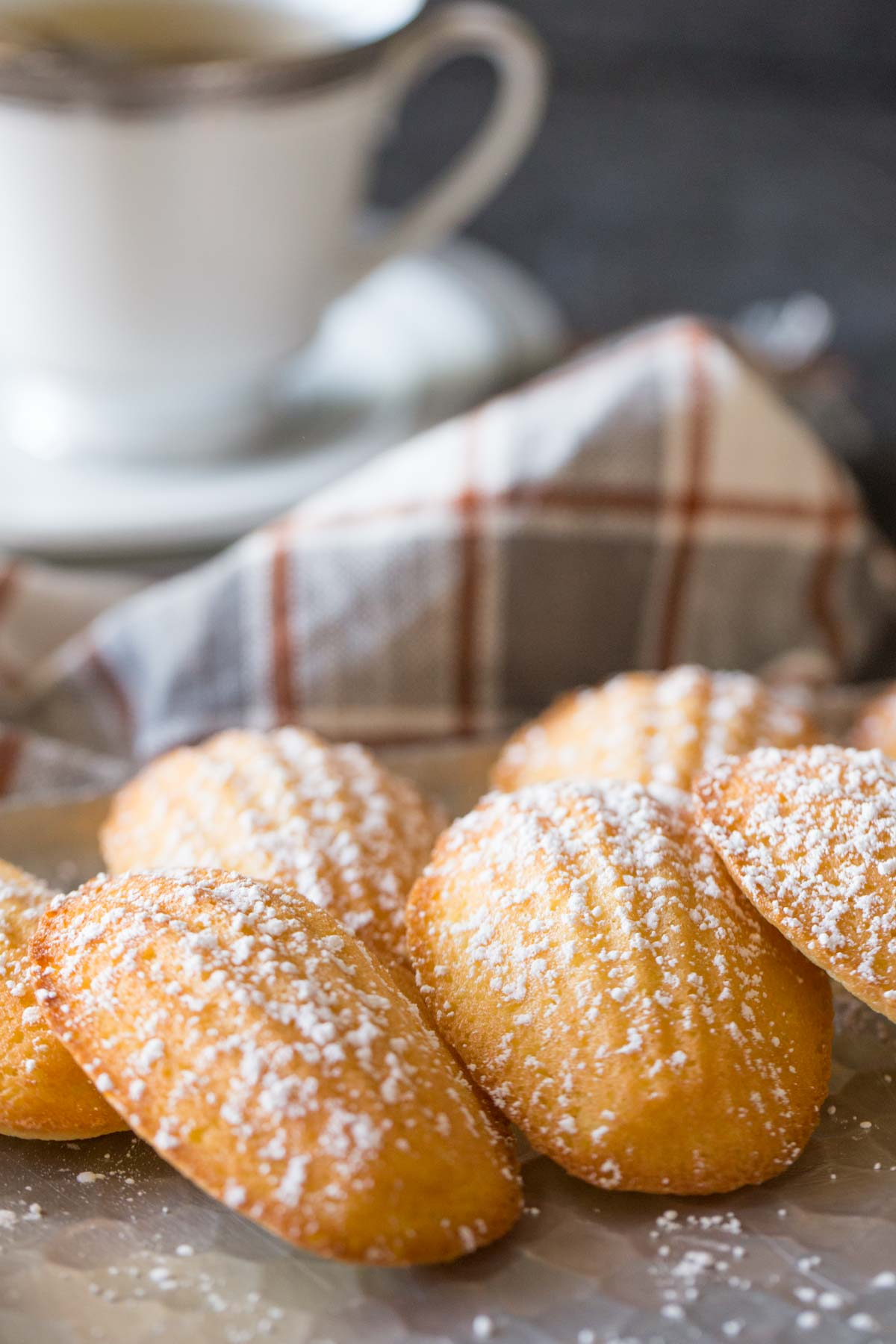 Close up of Lemon Vanilla Madeleines with a dusting of powdered sugar.