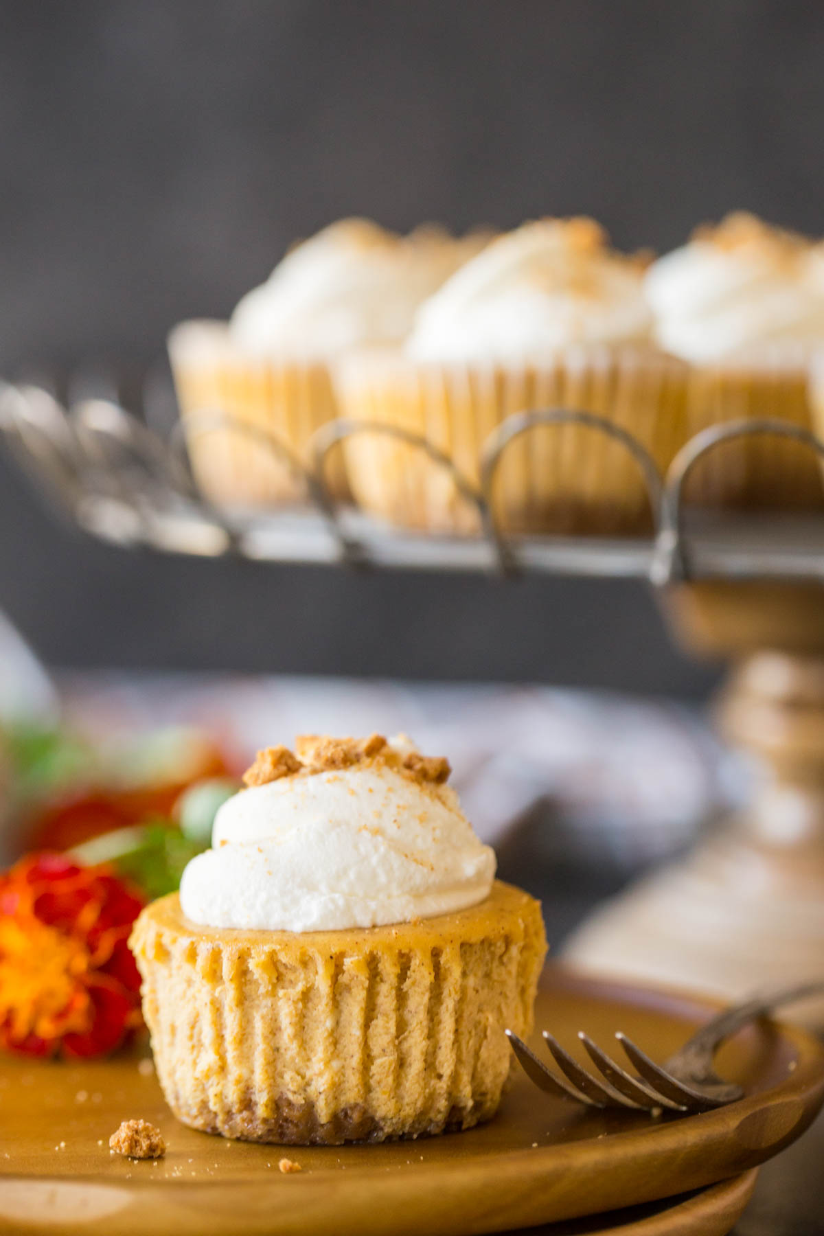 Straight on shot of pumpkin spice cheesecakes topped with whipped cream