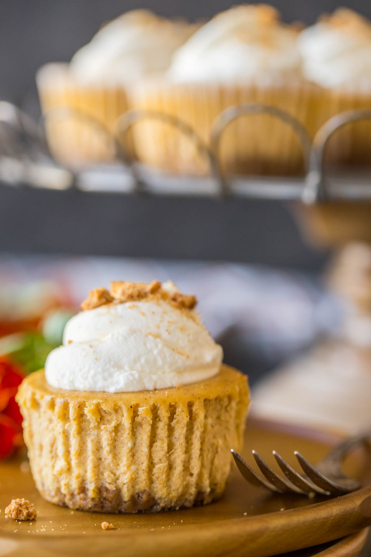 Close up shot of pumpkin spice cheesecakes topped with whipped cream