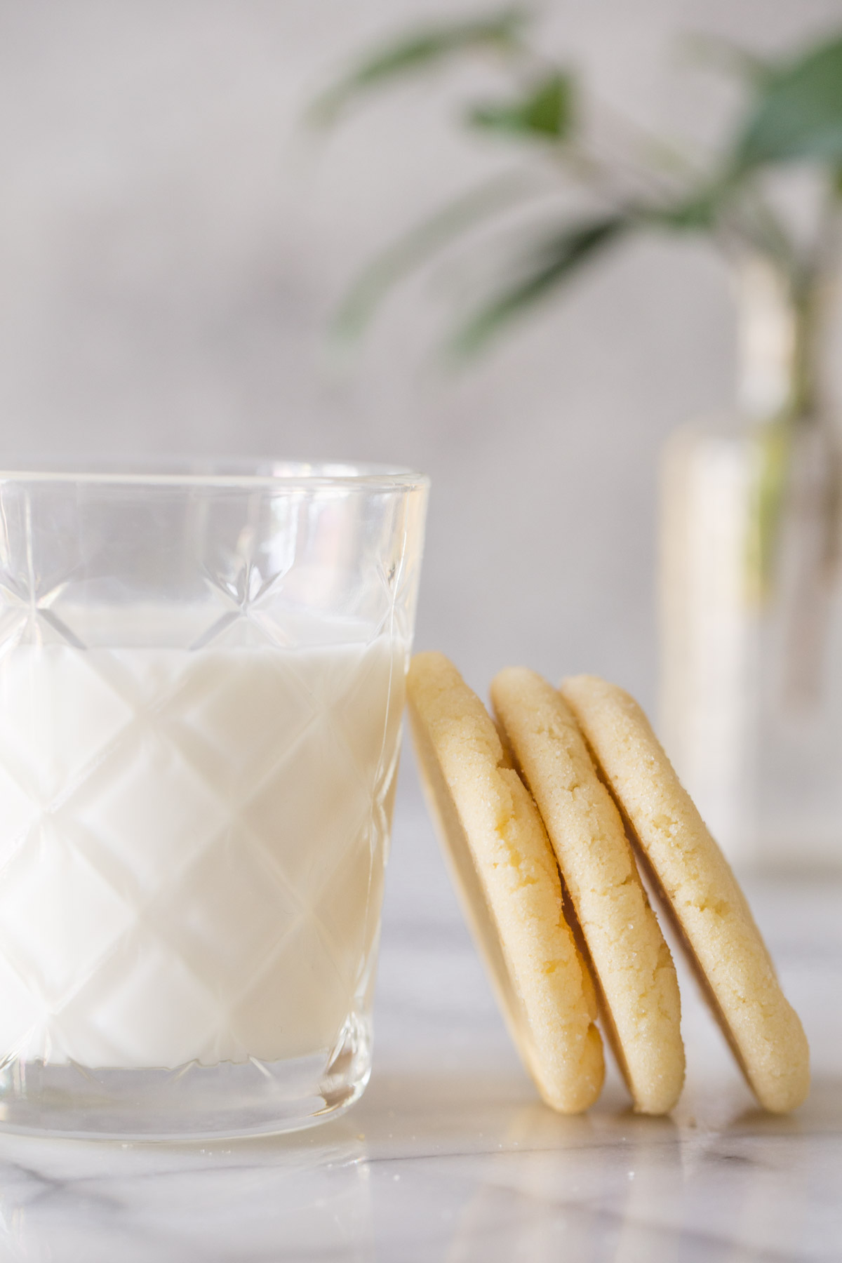 Three Soft and Chewy Sugar Cookies leaning against a glass of milk on a white background.