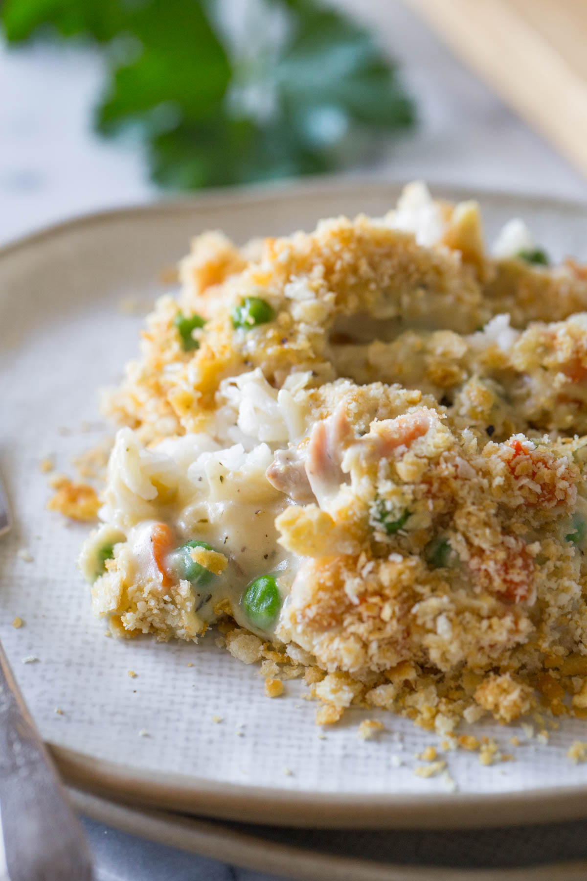Close up view of Creamy Chicken and Rice Bake on a white plate.