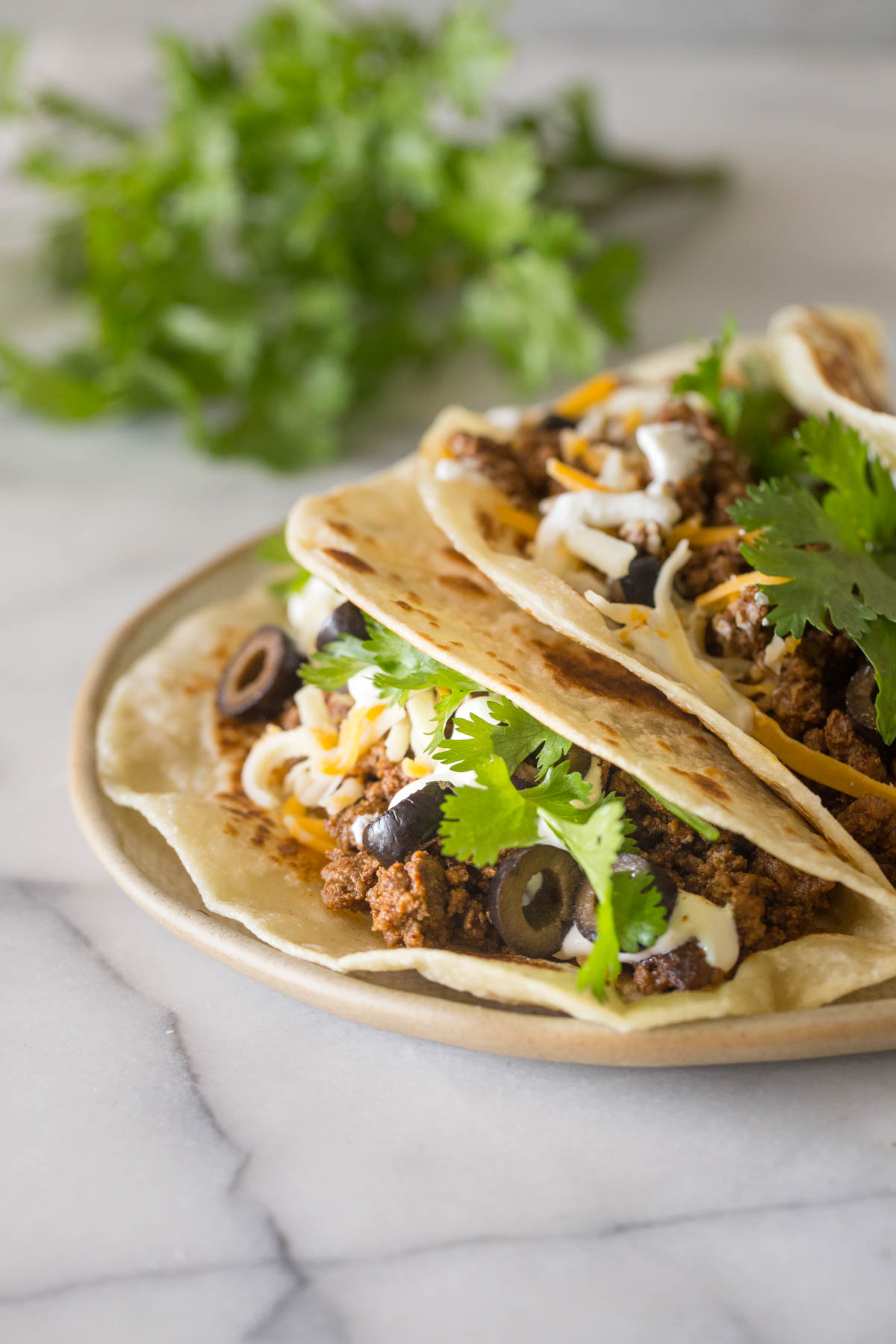 Two tacos topped with cilantro, black olives, and cheese on a plate.