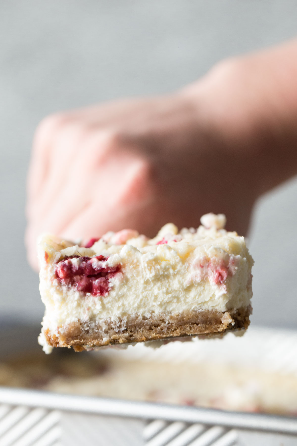 Close up shot of a Cheesecake Bar With Berry Streusel.