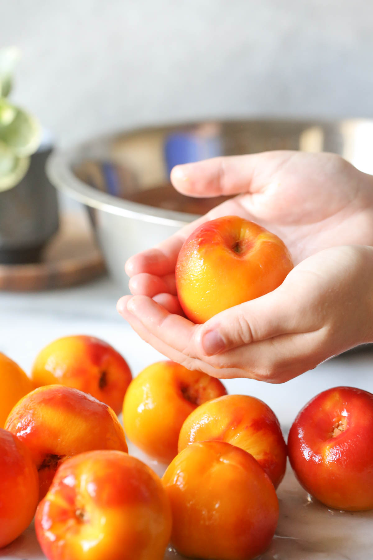 A hand holding a peach that has been peeled, with several more peeled peaches under the hand.